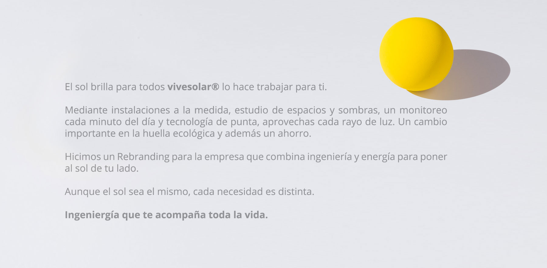 Yujo_ViveSolar_Web_02-1